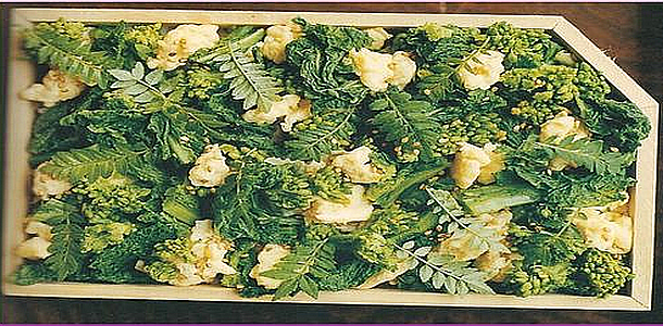 Rope Blossom Chirashi Zushi 菜の花のちらし寿司