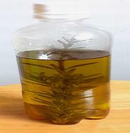 Herb Oil-MPO